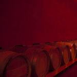 Weinfässer der Kellerei Tramin