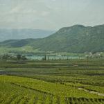 Von der Weinkellerei Tramin zum Kalterer See