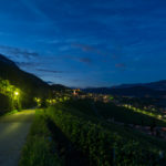 Tramin by night in the vineyards