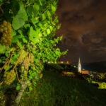 Trauben in Tramin by night